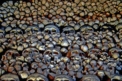 The Texture Of Skulls And Bones. Texture Death. Art Print by Andy Za