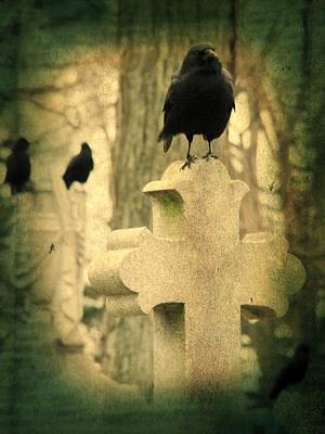 Ravens In Graveyard Photograph - The Three Graveyard Crows by Gothicrow Images