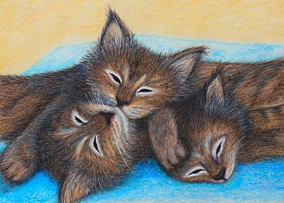 Drawing - The Three Zzz by Jo Prevost