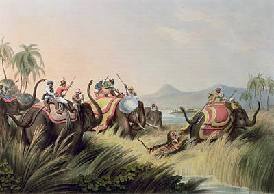 The Tiger Hunt Painting - The Tiger At Bay by Samuel Howett