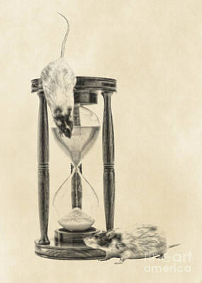 Digital Art - The Time Keepers by Olga Hamilton