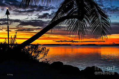 Photograph - The Torch The Island Sunset And The Lone Palm by Rene Triay Photography