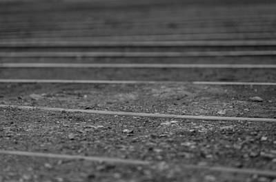 Photograph - The Tracks In Black And White by Amber Kresge