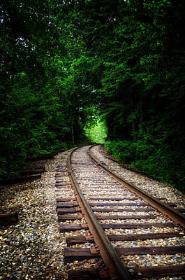 Photograph - The Tracks Through The Woods by Greg Mimbs
