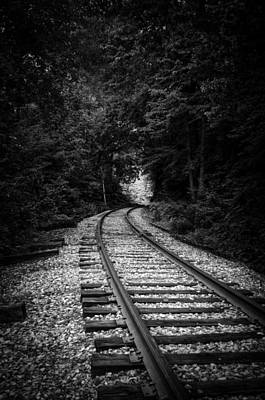 Photograph - The Tracks Through The Woods In Black And White by Greg Mimbs