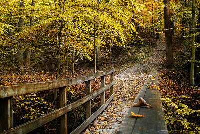 Woods Photograph - The Trail Calls by Rick McKee