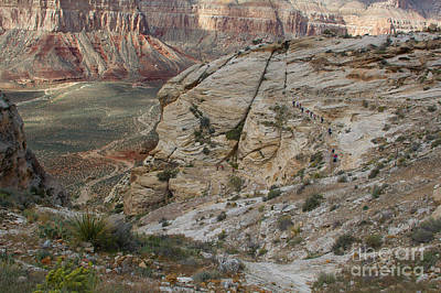 Photograph - The Trail Into Havasu by Jim McCain