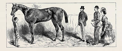 Action Sports Art Drawing - The Training Of A Racehorse At Home In The Stable by English School
