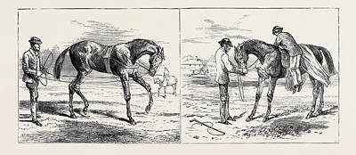 Action Sports Art Drawing - The Training Of A Racehorse Breaking The Yearling Left by English School