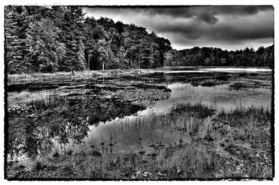Photograph - The Tranquil Fly Pond by David Patterson