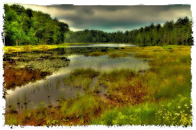 Photograph - The Tranquility Of Fly Pond by David Patterson
