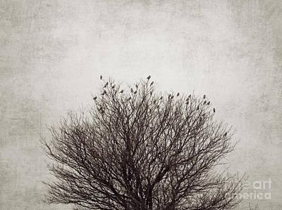 Sparrow Digital Art - The Tree by Diana Kraleva