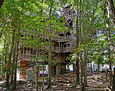 Photograph - The Tree House by Paul Mashburn
