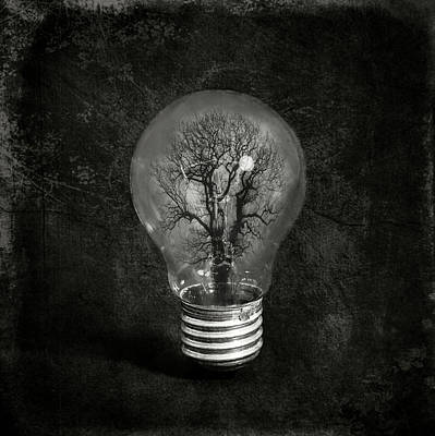 Light Bulb Wall Art - Photograph - The Tree by Igor Genovesi