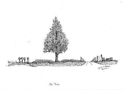 Mail Box Drawing - The Tree by Jack G  Brauer