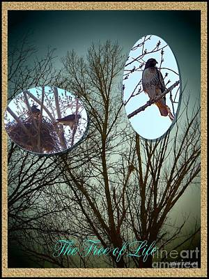 Photograph - The Tree Of Life by Bobbee Rickard