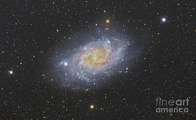 Abstract Shapes Janice Austin Royalty Free Images - The Triangulum Galaxy, Also Known Royalty-Free Image by Roberto Colombari