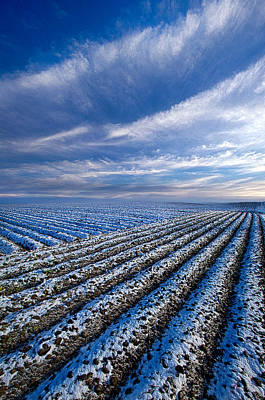 Photograph - The Truth About Tomorrow by Phil Koch