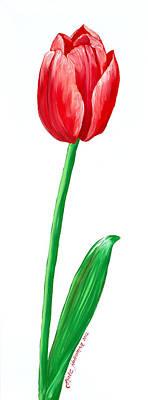 The Tulip Art Print by Kate Holloman