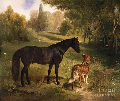 Black Horse Painting - The Two Friends by Adam Benno