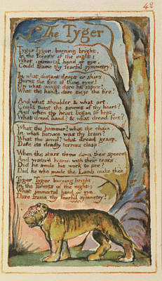 'the Tyger' Art Print