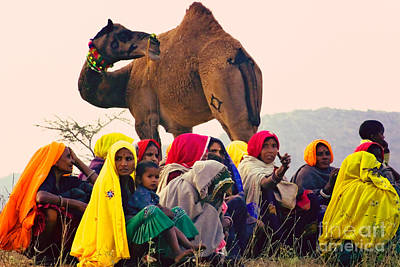 Photograph - The United Colors Of Pushkar by Neville Bulsara