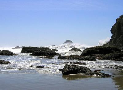 Photograph - The Untamed Sea by Will Borden