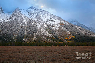 Photograph - The Valley Floor by Jim Garrison