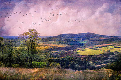 The Valley Art Print by John Rivera