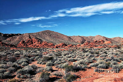 Photograph - The Valley Of Fire by John Rizzuto