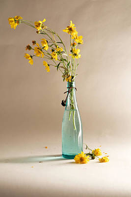 Photograph - The Vase by Mary Lee Dereske