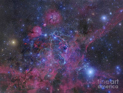 The Vela Supernova Remnant Art Print by Robert Gendler