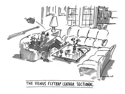 Venus Drawing - The Venus Flytrap Leather Sectional by Michael Crawford