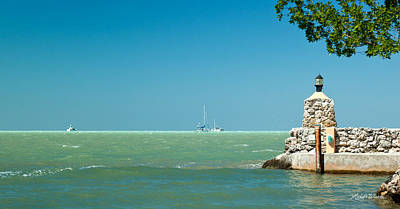 Photograph - The View From The Mitchells Place In Islamorada by Michelle Constantine