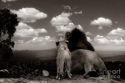 Photograph - The View2 by Christine Sponchia