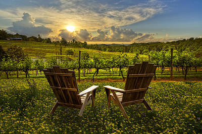 Smokys Photograph - The Vineyard   by Debra and Dave Vanderlaan
