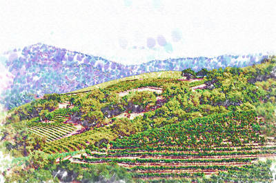 Napa Valley Vineyard Painting - The Vineyard by Kirt Tisdale