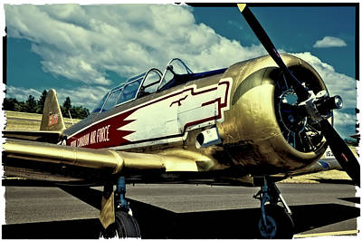 Trainer Aircraft Photograph - The Vintage North American T-6 Texan by David Patterson