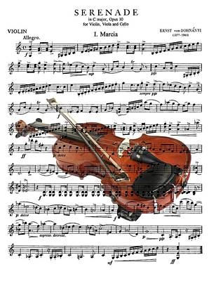 Digital Art - The Violin by Ron Davidson