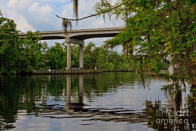 Photograph - The Waccamaw @ 544 Hwy by Gene Berkenbile