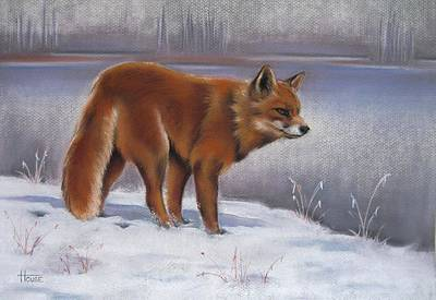 Fox Art Drawing - The Waiting Game by Cynthia House