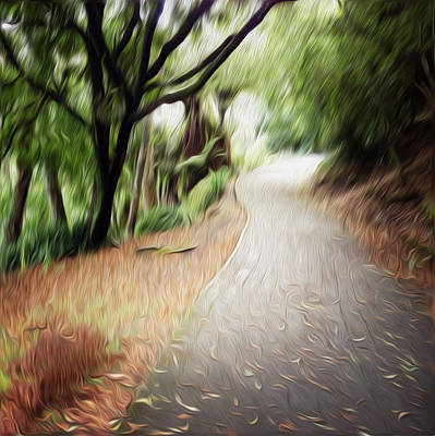 Walkway Digital Art - The Walk by Les Cunliffe