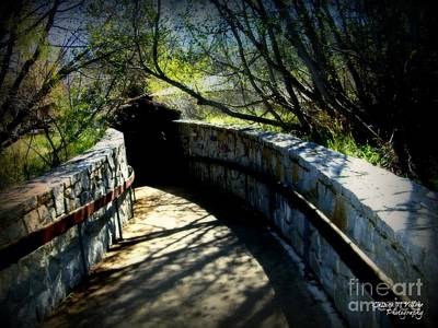 Photograph - The Walkway by Jessica Villone
