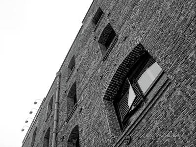 Photograph - The Walls Have Eyes by Donna Blackhall
