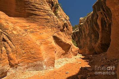 Photograph - The Walls Of Willis Creek by Adam Jewell