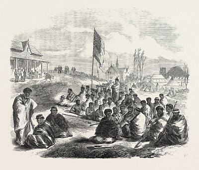 New Zealand Drawing - The War In New Zealand Surrender Of The Tauranga Natives by New Zealand School