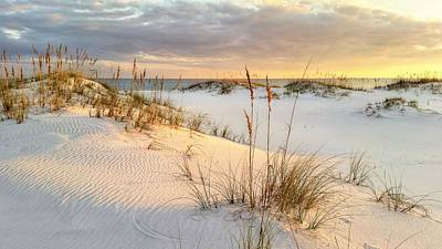 Photograph - The Warmth Of The Sand by JC Findley