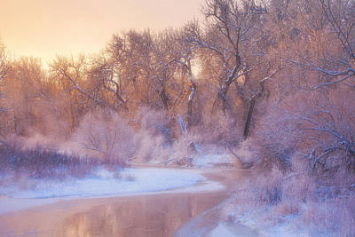 Winter Landscapes Photograph - The Warmth Of Winter by Darren  White