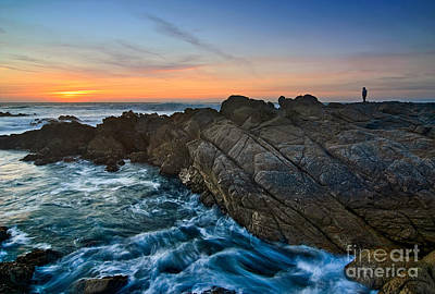 Observer Photograph - The Watcher - Rocky Asilomar Beach In Monterey Bay. by Jamie Pham