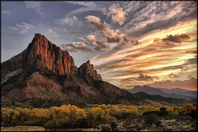 Photograph - The Watchman by Erika Fawcett